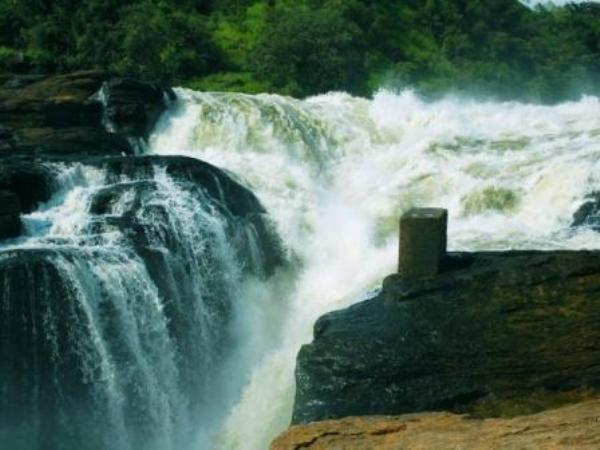 3 days murchison falls safari, murchison falls national park tour